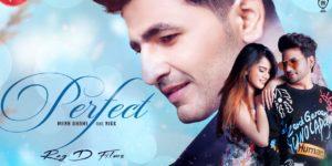 Perfect Song Lyrics - Nikk | Mann Dhami, Laakshi, Rox A