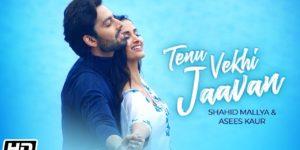 Tenu Vekhi Jaavan Lyrics - Shahid Mallya | Asees Kaur, Himansh Kohli, Shivani Jeevan Jadhav