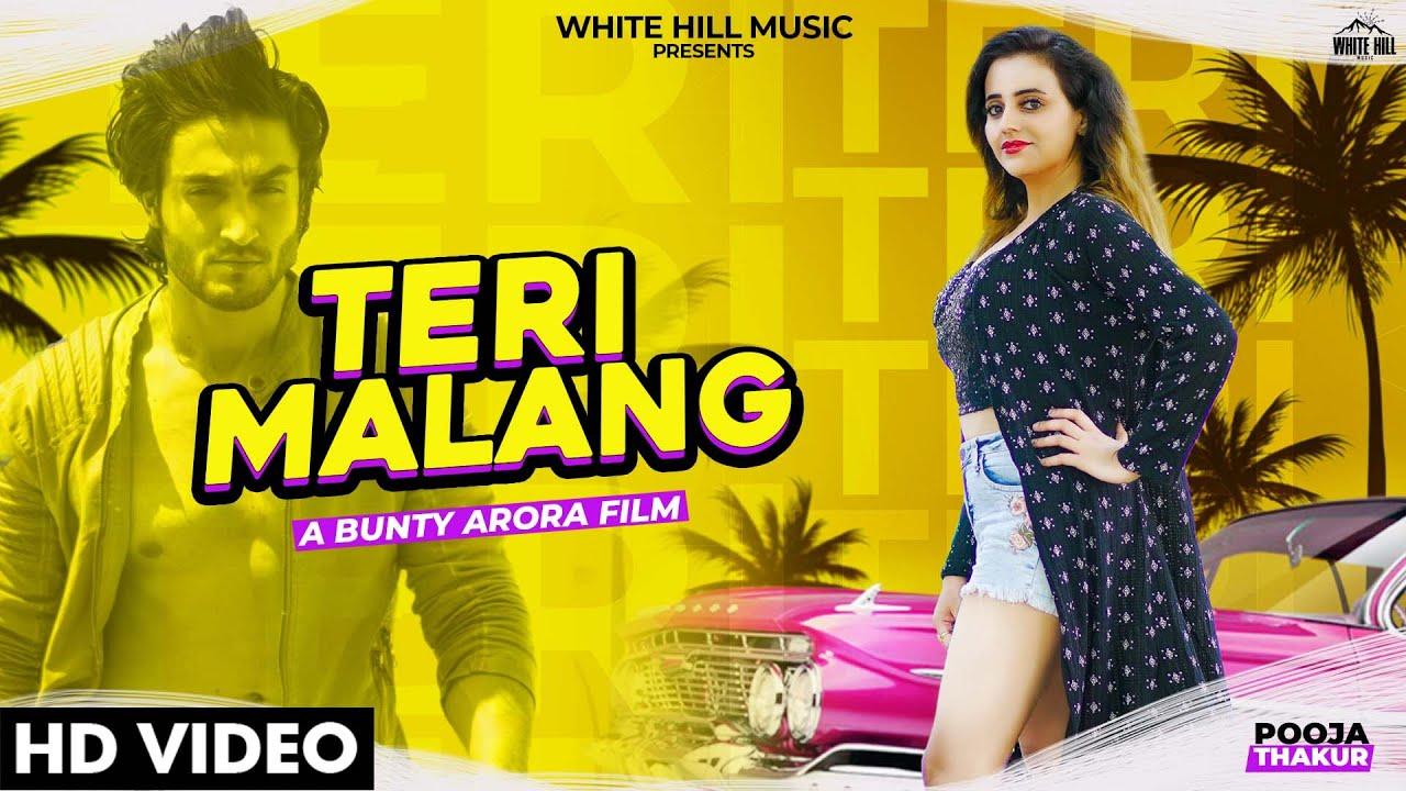 Teri Malang Lyrics - Pooja Thakur | Nawaab